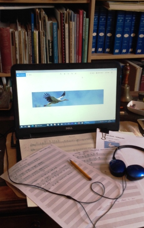 Writing White Storks